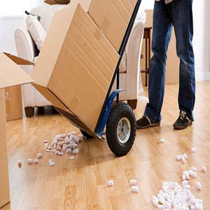 movers dc area