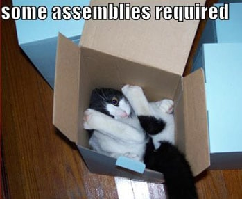 Assembly cat