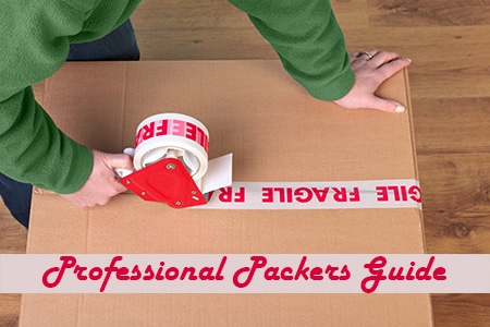 Professional packers and movers