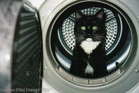 How to move a washing machine easily