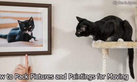 Picture This: How to Pack Pictures and Paintings for Moving
