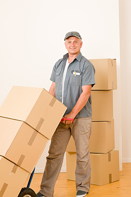 Average hourly rate for movers
